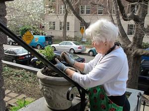 Helen Taney gardening at Joseph's House
